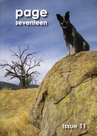 Page Seventeen_11_cover_2014 s